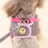 Segle Hundegeschirr, verstellbares Hundegeschirr mit Leine, atmungsaktives Netzgewebe, weiches Gewebe, Hunde/Welpengeschirr