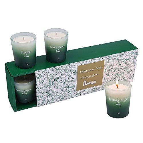 Freude Aromatherapie (Duftkerzen im Glas NuoYo Stumpenkerzen 4 Stück Teelichter Kerzen Set Aromatherapie Kerze aus Sojawachs Verschiedene Düfte Geschenkset Deko für Haushalt Feiern Geburtstag)