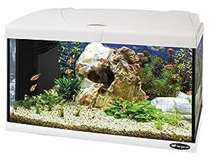 Ferplast Capri 60 Aquarium 60 L Blanc