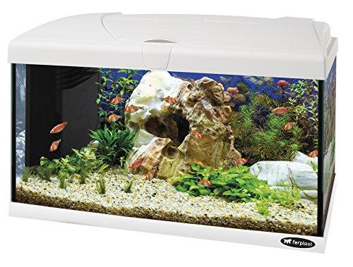 Ferplast 65016011W1 Acquario Completo di Lampada e Filtro