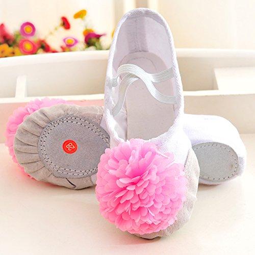 Wuyulunbi @ Kinder Dance Schuhe Kungfu Schuhe Ballett Schuhe, 25 internen Länge [16 cm], die Blüte ist Weiß