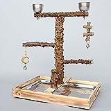 Myyxt Papageien Spielzeug Swing Übung mit Glocken Vogel standing Frame Pepper Wood