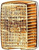 HELLA 2BM 002 652-071 Zusatzblinkleuchte, Blinklicht, Anbau links, 12 V, gelb