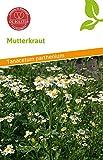 De Bolster 15980 Mutterkraut (Bio-Mutterkrautsamen)