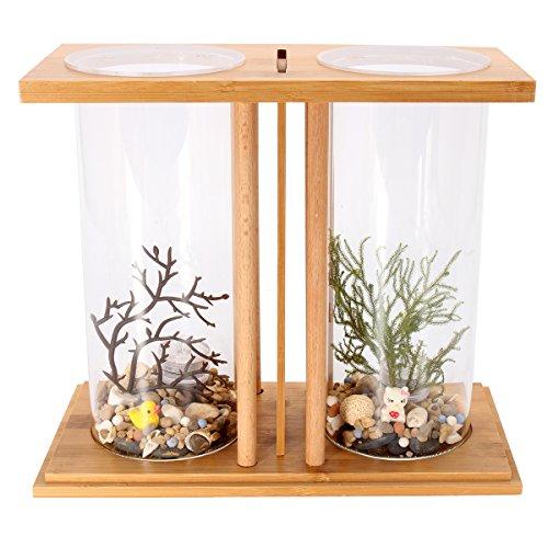 dDanke 360Grad View Fisch Aquarium-Set Mini Glas Aquarium, Das mit Dual Glas Vase und Bambus Regal für Betta Fisch Goldfisch (Glas-schale Terrarien,)