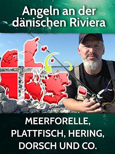 Angeln an der dänischen Riviera - Meerforelle, Plattfisch, Hering, Dorsch und Co.
