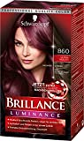 Schwarzkopf Brillance Intensiv-Color-Creme, 860 Ultraviolett Stufe 3, 3er Pack (3 x 143 ml)