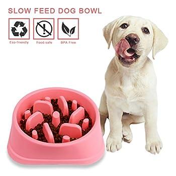 Decyam Bol de nourriture antidérapant en forme de labyrinthe pour animal domestique Alimentation saine/digestion lente