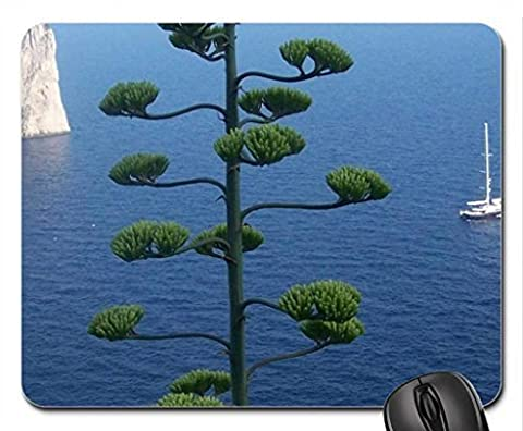 amazing tree overlooking rocks and a boat at sea Mouse Pad, Mousepad (Oceans Mouse Pad)
