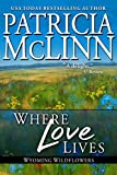 Book cover image for Where Love Lives: The Inheritance (Wyoming Wildflowers Book 6)