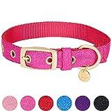 Blueberry Pet Begehrteste Designer Misch-Glanzfaden Hundehalsband in Leuchtend Pink mit Metallschnalle, L, Hals 43cm-52cm, Verstellbare Halsbänder für Hunde