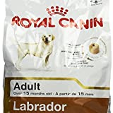 #9: 3 KG Royal Canin Labrador Adult by Best Buy Sure
