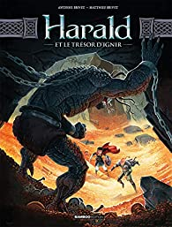 Harald et le trésor d'Ignir, tome 2 par Matthieu Brivet
