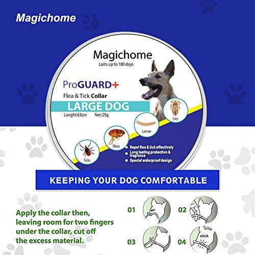 Zoom IMG-3 magichome collare antiparassitario per cani