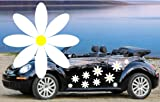 Best Car Decals - 32,WHITE DAISY FLOWER VINYL CAR DECALS,STICKERS,CAR GRAPHICS,DAISIES Review
