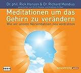 Meditationen, um das Gehirn zu verändern (Wie wir unsere Nervenbahnen neu verdrahten - gesprochen von Erich Räuker und Andreas Gröber)