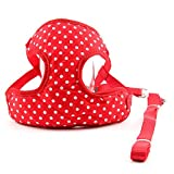 #4: VUGSUCE Knitted Harness Dog Belt Set Vest Mesh Adjustable Breathable Pet Harness Legs Chest Strap for Chihuahua Puppy Small Dogs - S, Red