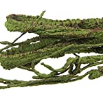 emours Flexible Bend-A-Branch Jungle Vines Pet Habitat Decor for Lizard,Frogs, Snakes and More Reptiles,Small, 3.2ft… 7