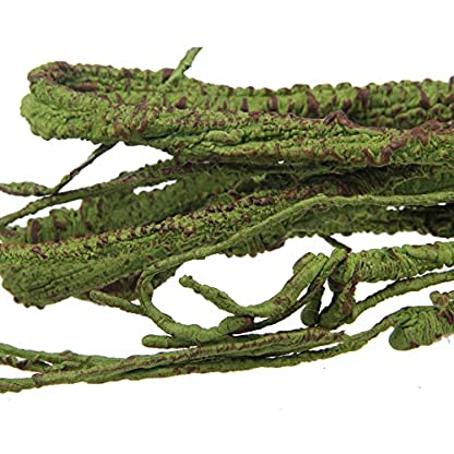 emours Flexible Bend-A-Branch Jungle Vines Pet Habitat Decor for Lizard,Frogs, Snakes and More Reptiles,Small, 3.2ft… 2