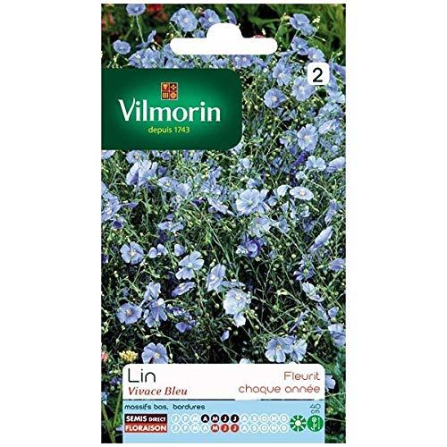 Vilmorin - Sachet graines Lin vivace bleu