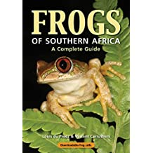 Frogs of Southern Africa – A Complete Guide