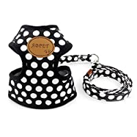 smalllee_lucky_store New Soft Mesh Nylon Vest Pet Cat Small Medium Dog Harness Dog Leash Set Leads Black S