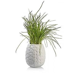 Bitten Pineapple Planter jarrón Piña,