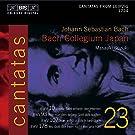 Bach: Cantatas, Vol 23 (BWV 10, 93, 178, 107) /Bach Collegium Japan � Suzuki