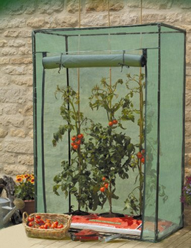 tomato-growbag-growhouse-with-heavy-duty-reinforced-cover