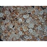 Maalavya Aquarium Seep Stone Circle Gomti Chakra Pebble Gravel Chips Puja Decoration - 250gm