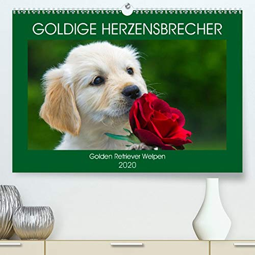 Goldige Herzensbrecher - Golden Retriever Welpen(Premium, hochwertiger DIN A2 Wandkalender 2020, Kunstdruck in Hochglanz): Entzückende Golden ... (Monatskalender, 14 Seiten ) (CALVENDO Tiere) -