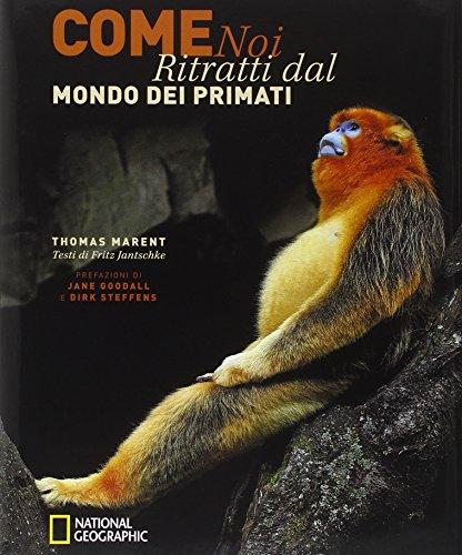 Come noi. Ritratti dal mondo dei primati. Ediz. illustrata