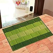 Status Polypropylene Anti Slip Floor Door Mat in Home Kitchen Office Entrance Mats ( 38x58 cm) -Pack of 1 (Gre