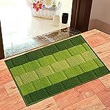 Status Polypropylene Anti Slip Floor Door Mat in Home Kitchen Office Entrance Mats (38x58 cm, Green) -Pack of 1