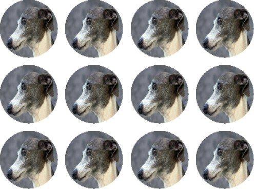 greyhound-gris-et-blanc-comestibles-pour-gateaux-12-de-38-mm-38-cm-128