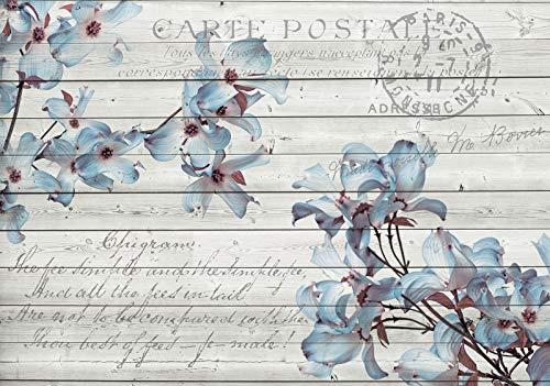 Forwall Fototapete Vlies Tapete Wanddeko Blumen Blau - Grau Natur Blumenmuster Bretter Moderne Wanddekoration 3545V8 368cm x 254cm Schlafzimmer Wohnzimmer