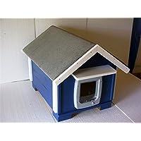 Gato Casa Outdoor suelo aislado con gato Tapa