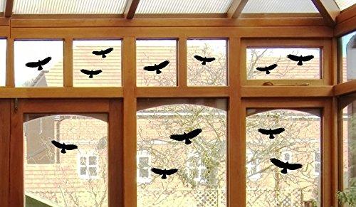 12-uccello-adesivi-uccelli-finestra-vetro-greif-uccello-vetrofania-b416-nero