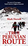 The True Peruvian Route: An ascent of Aconcagua, South America's highest mountain (Footsteps on the Mountain travel diaries Book 14)