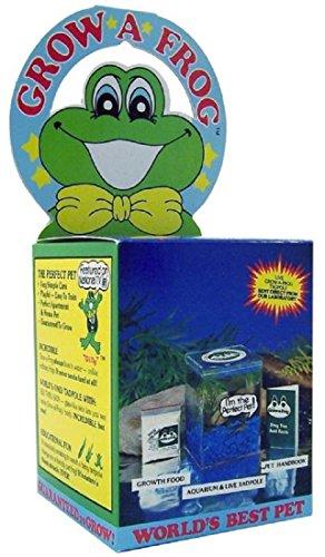 olympia-sports-11832-grow-a-frog-kit