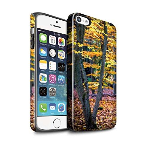 STUFF4 Glanz Harten Stoßfest Hülle / Case für Apple iPhone 5/5S / Pack 5pcs / Herbst Saison Kollektion Baum/Blätter