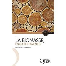 La biomasse, énergie d'avenir ? (Enjeux sciences)