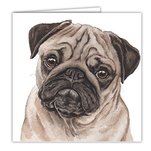 MOPS Fawn Hund Geschenk–Qualität Grüße Karte mit gratis Auto-Lufterfrischer
