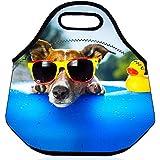 SummerBoom perro en la piscina caliente aislamiento térmico neopreno El almuerzo bento envase de alimento Escuela / Oficina