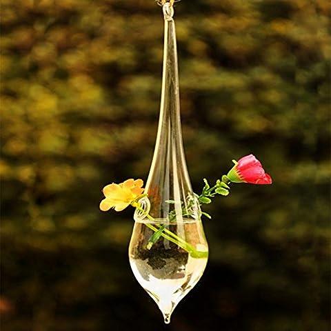 Kungfu Mall goccia Hanging vaso di vetro idroponico piante da giardino Flower Pot - Hanging Flower Vase