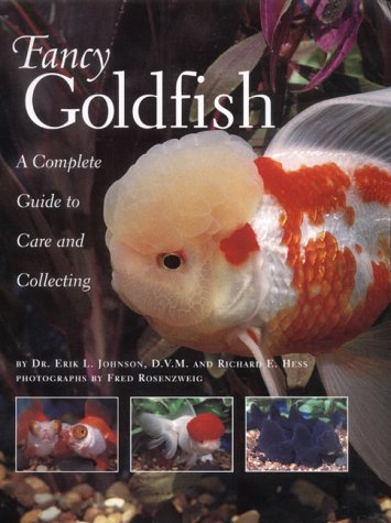 Fancy Goldfish: A Complete Guide to Care and Caring -