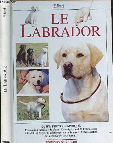 Le Labrador par Valeria Rossi