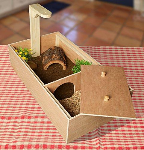 Tortoise Box - Tortoise House 1