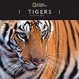 Tigers Nat Geo W  2019 (Square)