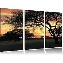 Savana africana nel crepuscolo in 3 pezzi immagine Foresta tela 120x80 su tela, Immagini XXL completamente incorniciato con grandi cornici di cuneo, stampe d